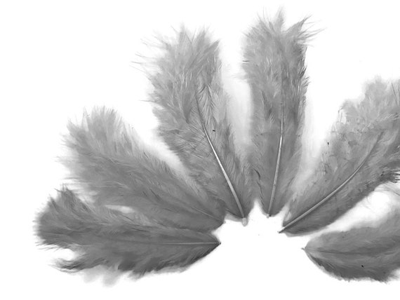 """8-10/"""" Fly Tying Wholesale Feathers QTY 15 Grizzly Eurohackle Saddle Feathers"""