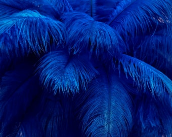 """USA Ostrich Feathers, 10 Pieces - 6-8"""" Royal Blue Ostrich Dyed Drabs Body Plumage Feathers Craft Supplier : 1365"""