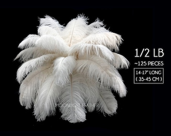 """Ostrich Feathers, 1/2 lb - 14-17"""" Off White Ostrich Large Drab Wholesale Feathers (bulk) : 2053"""