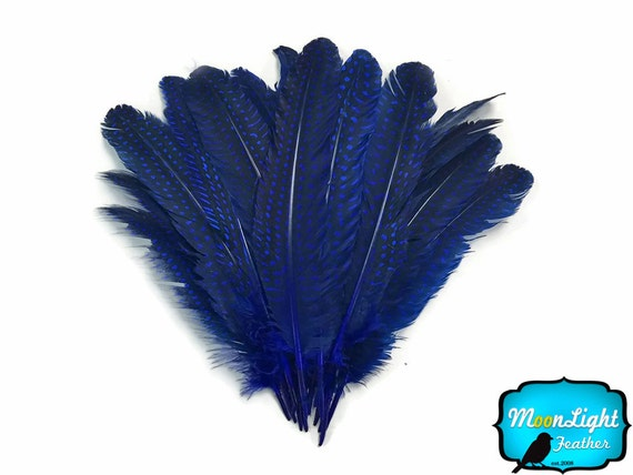 pheasant /& guinea fowl feathers Blue feather headdress /'Aves/' hand made using natural macaw