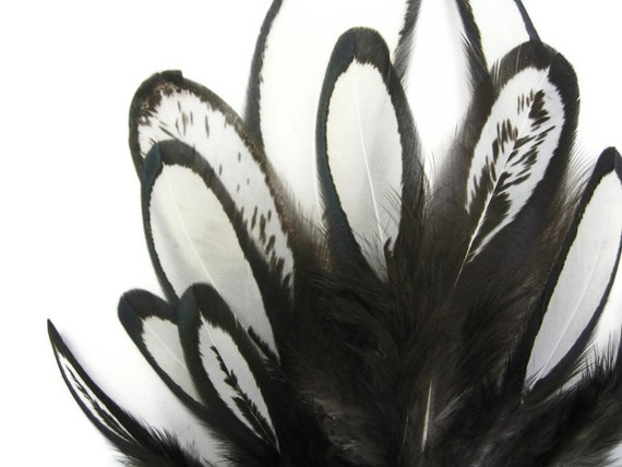 Natural White Whiting Farms Laced Hen Saddle Feathers Fly Tying Craft 1 Dozen