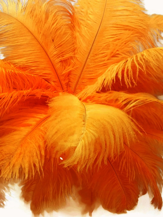 "200 Feathers 9-13/"" Burgundy Ostrich Drabs Wholesale Feathers Wedding Halloween"