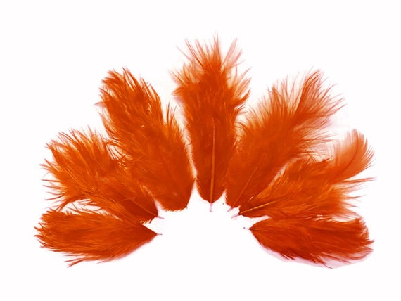 1 Dozen Solid Orange Rooster Chickabou Fluff Mini Feathers USA SELLER