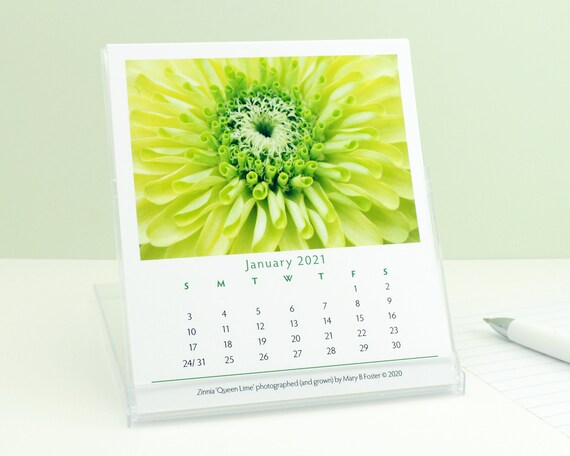 Succulent Lover Gift Modern Country Rustic Decor Nature Photo Calendar Succulent Photography Hostess 2021 Desk Calendar Bridesmaids