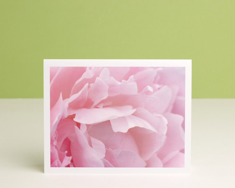 Pink Peony Photo Note Card blush flower petals macro photography stationery