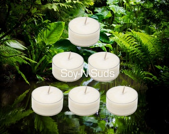 Soy Tea Lights, Soy Candles, RAINFOREST, Dye Free, T Lites, RAINFOREST Candles, 6 Pack, White Candles, Scented, Spring Candles
