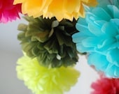 Pick Any Colors - 20 Piece Pom Set plus 3 FREE POMS and READY TO SHIP