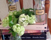 Vintage glass spice containers with labels (Set of 6)