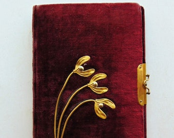 1800's Velvet Journal Book
