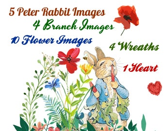 24 Peter Rabbit and Poppy Flowers Clip Art Transparent PNG Files Instant Download
