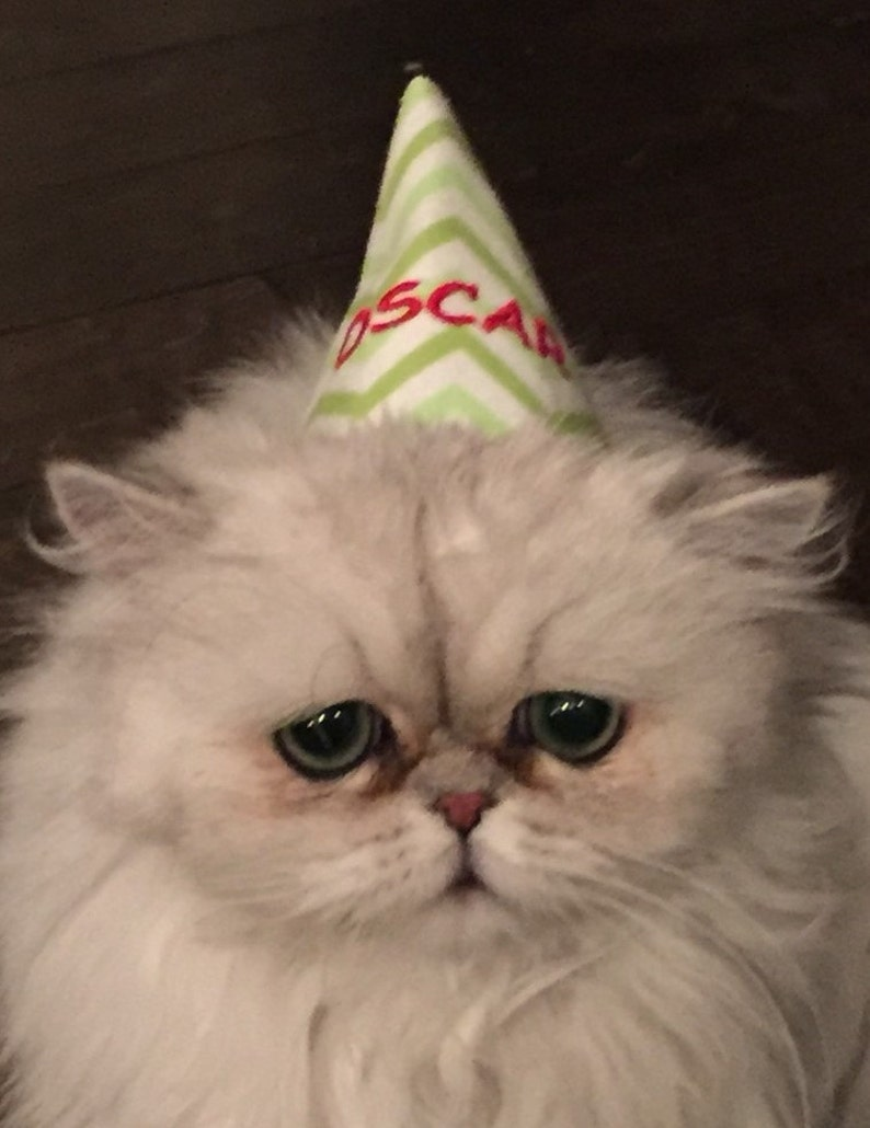 Birthday Hat Cat PERSONALIZED