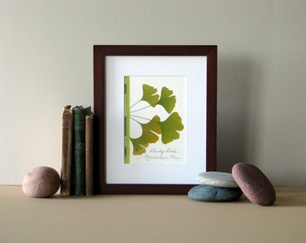 "Pressed flower print, 8"" x 10"" matted, Ginkgo leaves, green leaf, pressed leaves, Ginkgo wall art, no. 018"