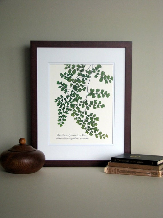 Pressed Fern Art Print 11x14 Double Matted Southern Etsy
