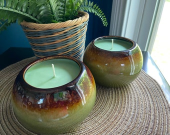 Beautiful Clover Fields and Aloe Soy Candle