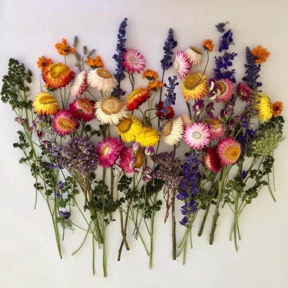 Afbeeldingsresultaat voor dried flowers