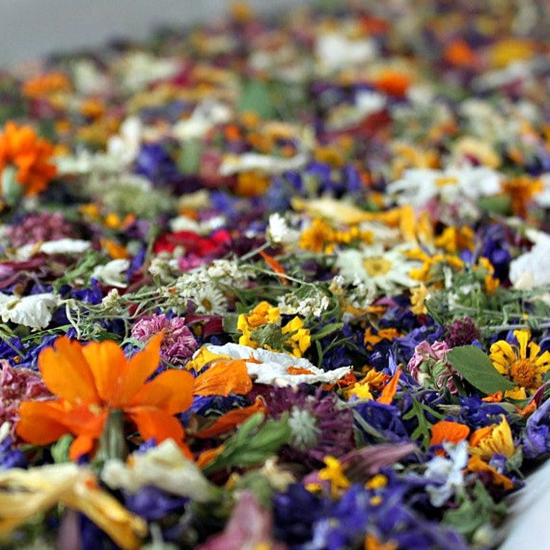 Dried Flower Confetti Wedding Confetti Real Dry Flower All colors