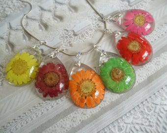 Daisy In Rainbow of Colors Encased in Glass Pressed Flower Teardrop Pendant-Symbolizes Loyal Love-April's Birth Flower-Bridesmaid's Jewelry