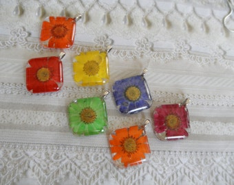 Rainbow Of Colors-Daisy Pressed Flower Square Glass Pendant-Your Choice-Symbolizes Loyal Love-April's Birth Flower-Bridesmaid's Jewelry