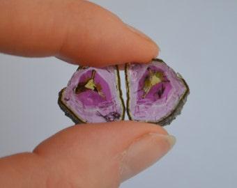Tourmaline Slice Matched Pair - 8.5 Carats