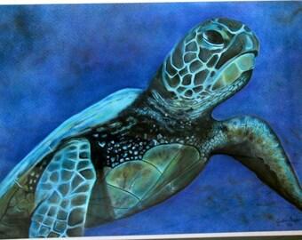 Sea Turtle Original Pastel, Sea Turtle, Sea Turtle Artwork Framed, Ocean Life, Sea Life, Turtles, Loggerheads