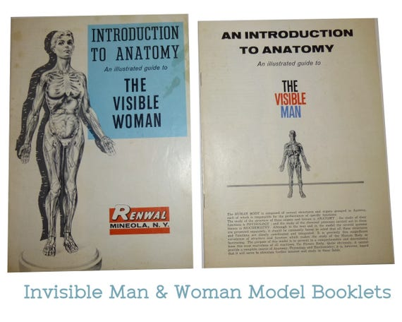 1960 Visible Woman And 1959 Visible Man Illustrated Booklet Etsy