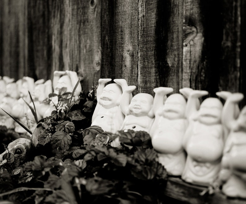 Buddhas Black and White Photo 8x10 Buddha Home Decor Zen image 0