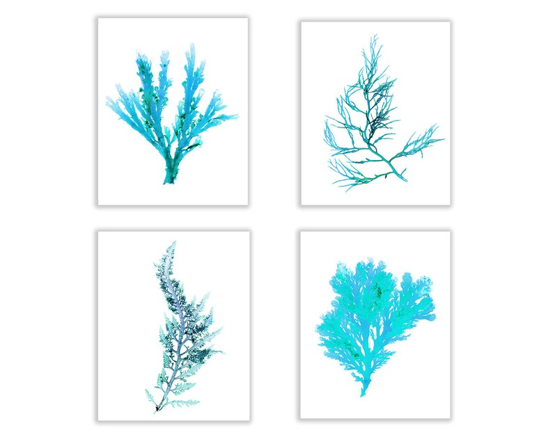 Teal Coastal Decor Seaweed Print Set Vibrant Coastal Print image 0