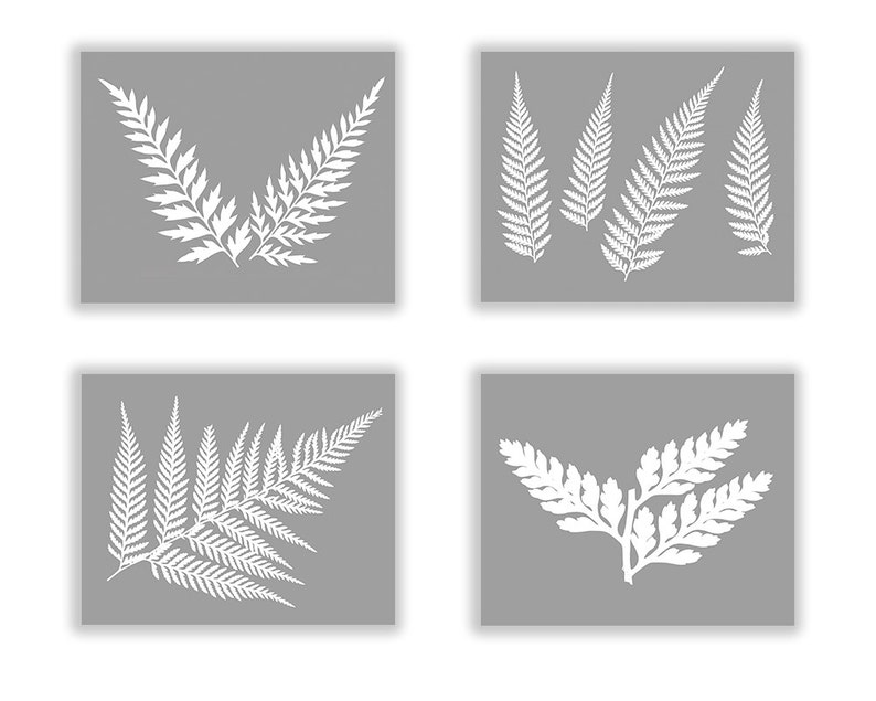 Fern Botanical Black and White Print Set Gray Fern Modern image 0