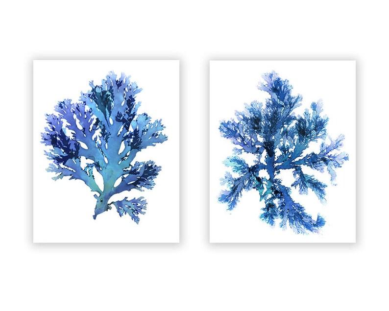 Seaweed Art Prints Large Blue Artwork Beach House Wall image 0