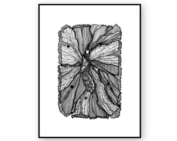 Butterfly Wing Print