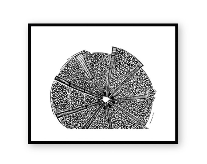Spinning Wheel Print