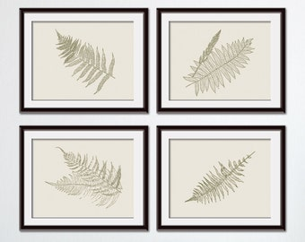 Ferns Garden Botanical Prints (Series M-Horizontal) Set of 4 - Art Prints (Featured in Dried Herb on Soft China)