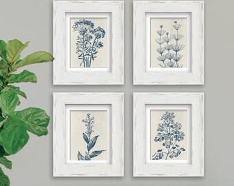 Wild Field Flower  (Series B9) Set of 4 - Art Prints (Featured in Denim Blue on Stone Wash) Botanical Flower Art Prints