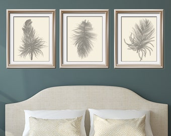 Feathers (Series C3) Set of 3 - Art Prints (Featured in Gravel on Soft Cream) Nature Woodland Inspired