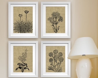 Wild Flowers Botanical Prints (Series C4) Set of 4 - Art Poster Prints (Featured in Coffee Burlap) Modern Vintage Flower Art Prints