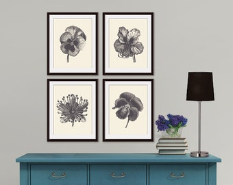 Flower Heads (Series F) Set of 4 Art Poster Prints (Featured in Charcoal and Cream) Botanical Art Prints