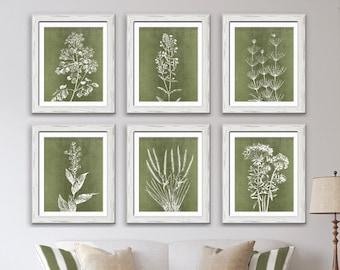 Wild Field Flowers (Series B7) Set of 6 - Unframed Art Prints (Featured in Moss Linen) Botanical Flower Art Poster
