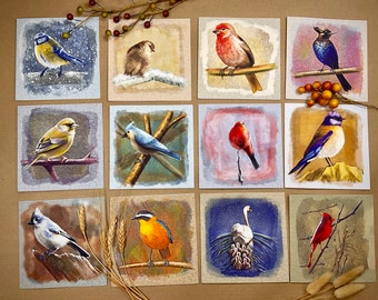 """Illustrated Bird Cards Set of 12, 5.5"""" x 5.5"""" Square, Blank Inside"""