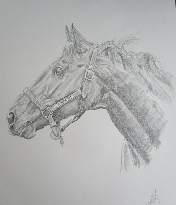 "Secretariat original pencil/graphite b/w drawing 14""x17"""