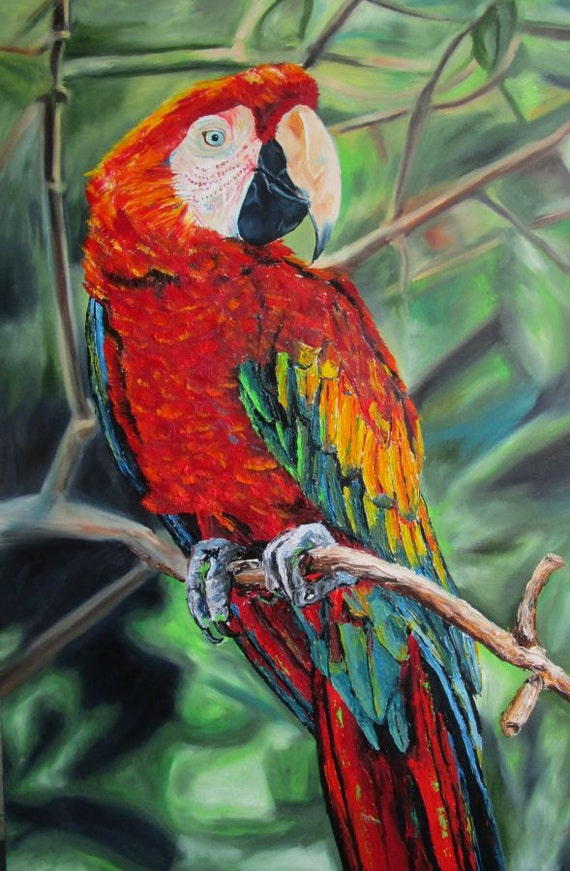 "Large Original Oil Painting Scarlet Macaw Parrot Large 24"" x 36"""