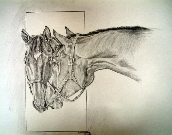 Barbaro Horse Racing Kentucky Derby Limited Edition Print
