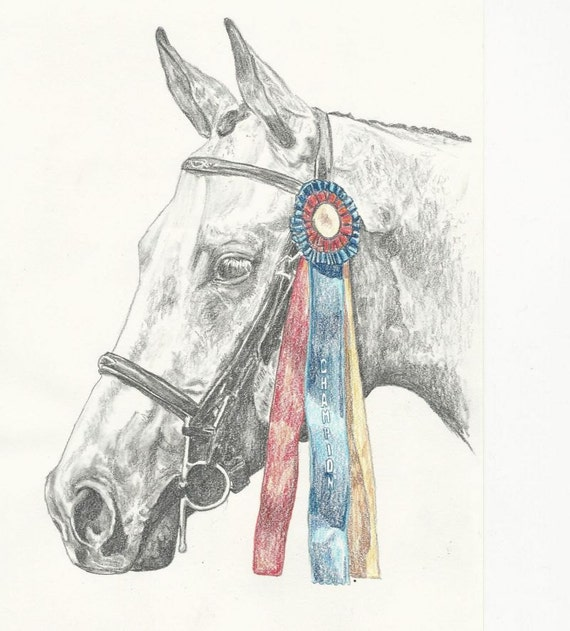 Show Horse Jumper Hunter Pony Print
