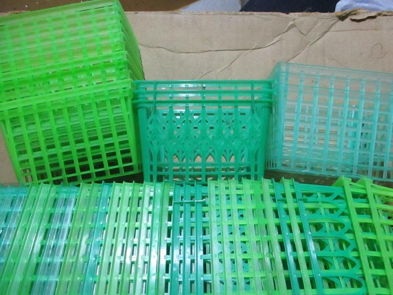 green vintage set of 20 Plastic Berry Box Raspberry