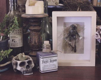 Mummified Fairy Specimen #76 Preserved Faery