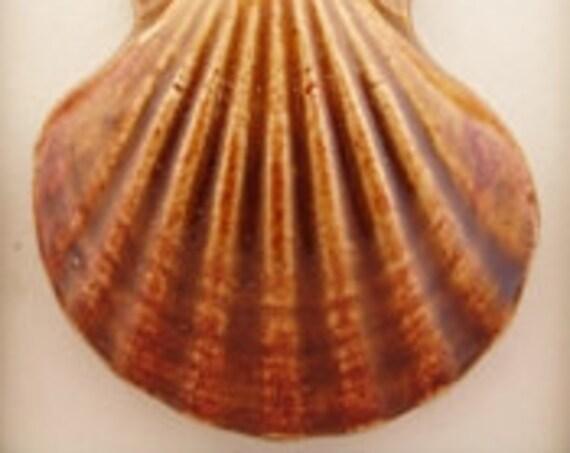 Shell Stoneware Pendant