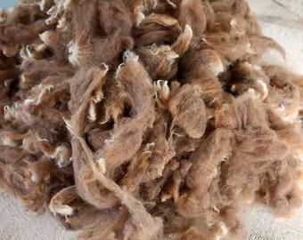 CVM Wool - Dark moorit washed locks