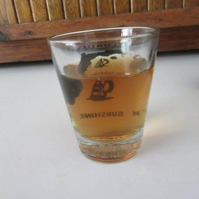 Vintage Souvenir Barware Florida Souvenir Shot Glass \u2013 The Sunshine State Clear Glass Jigger
