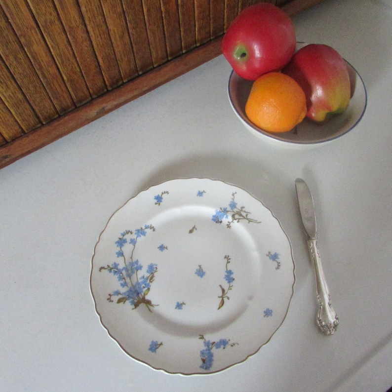 Blue Forget-Me-Not Flowers on White Porcelain Haviland Montmery Luncheon Plate Vintage Theodore Haviland Limoges Fine China