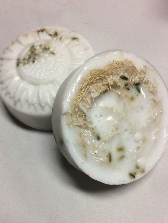 Loofa and Lavender Goat's Milk Soap - 2 bars - castile soap - hand soap - homemade soap - natural soap - goat milk soap