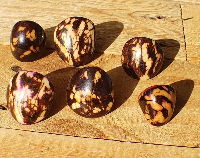 Tagua nut SIZE 7 Glossy rustic rings semi peeled nut